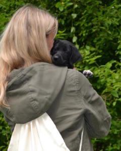 Welpenschule Hundezucht Nachwuchs Hund
